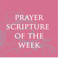 Prayer Scripture of the Week
